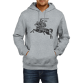 Grey hoodie with Vytis