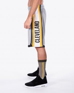 Nike NBA Cleveland Cavaliers City Edition Swingman Shorts - NBA Shop ... 627d2988e