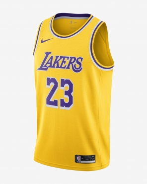 online store 264c6 2a53d Nike NBA Los Angeles Lakers Lebron James Icon Edition ...
