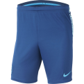 Nike FC Barcelona 2018/19 Dri-FIT Squad Shorts
