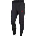 Nike Paris Saint Germain Dri-Fit Pants