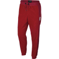 Jordan Sportswear Wings Of Flight Fleece Pants