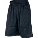Jordan Ele Blockout shorts